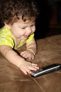 Blackberry Thief