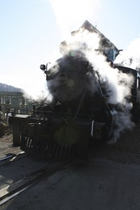 Lindy, the Washington & Lincolnton #203 steam engine for the Three Rivers Rambler.